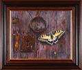 Pekka Leppälä: Papilio machaon